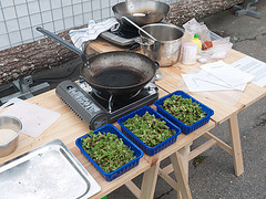 The Azolla Cooking and Cultivation Project, Erik Sjödin 2010 - 2012